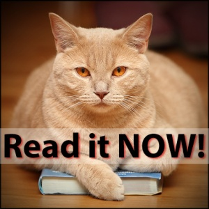 Cat_Read_it_now