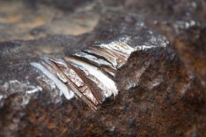 hoba-meteorite